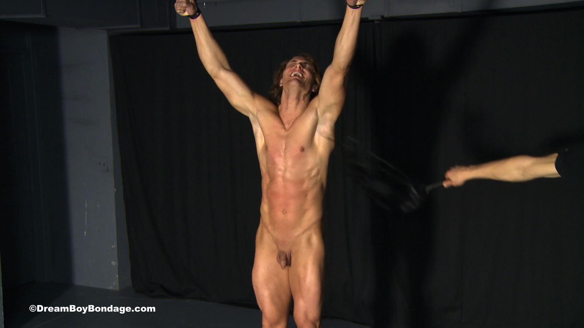 Gay bondage dvds