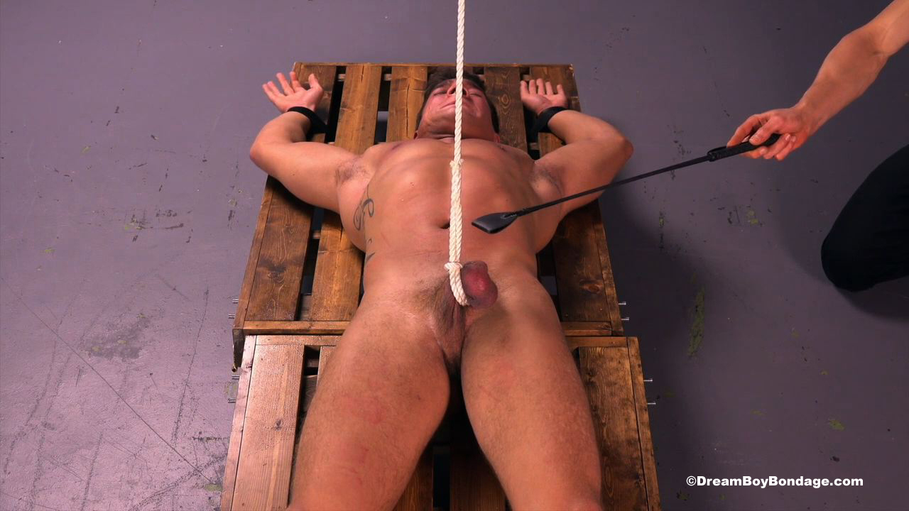 from Marco gay bondage dvds