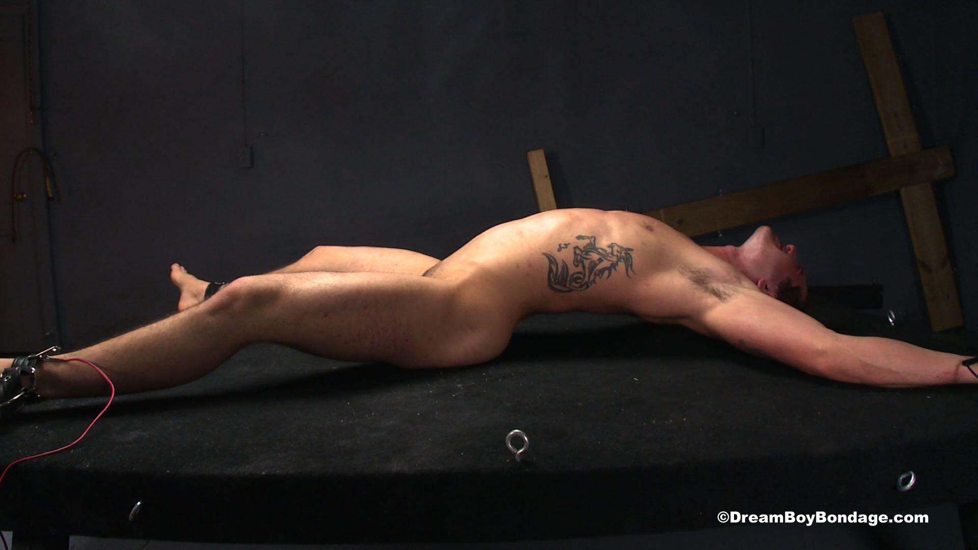 Free dream boy bondage