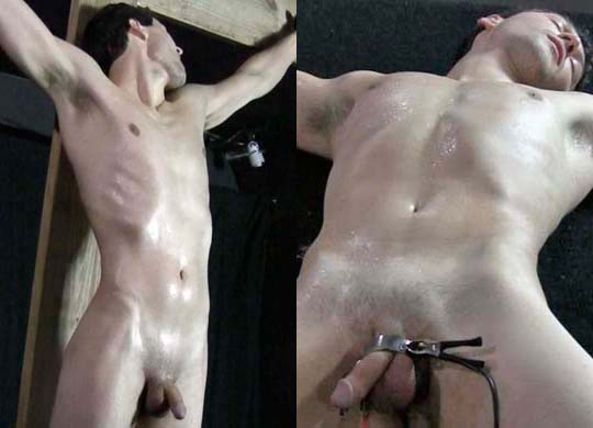 Darin dream boy bondage